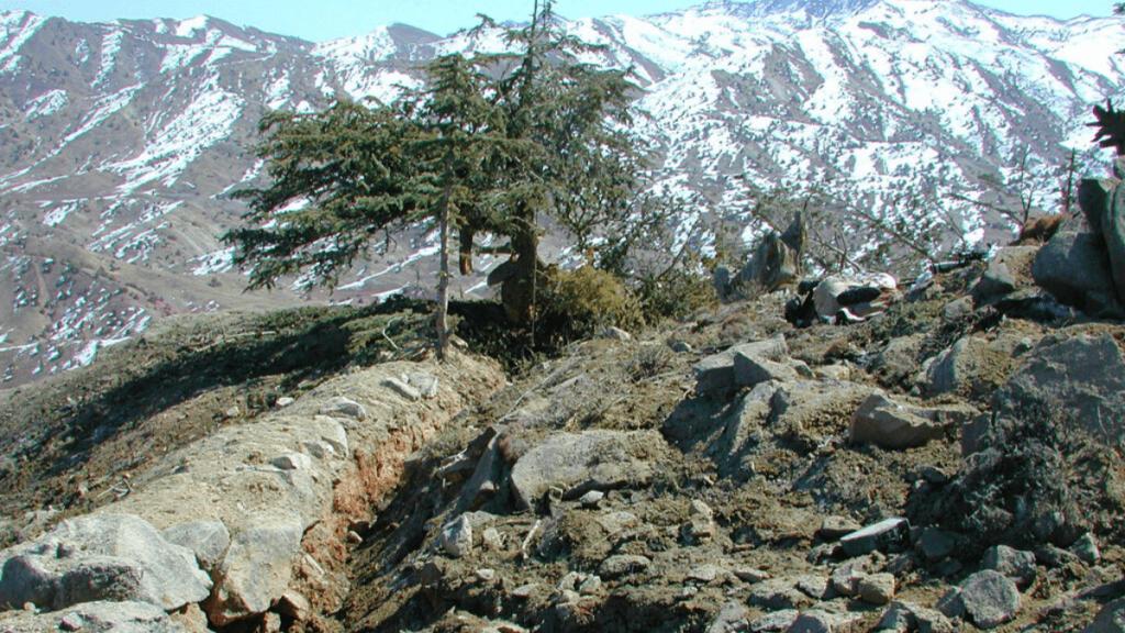 the Battle of Takur Ghar